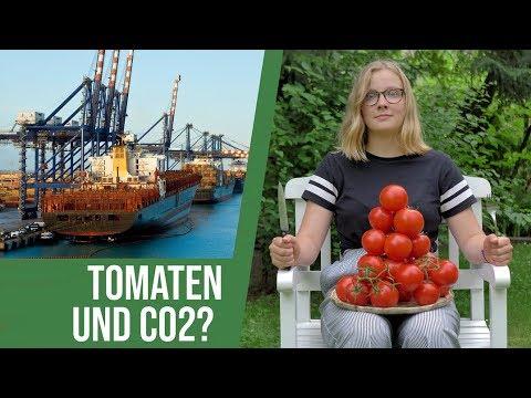 Mathilda fragt nach(haltig): Sind Tomaten eine Nachhaltigkeitskatastrophe?
