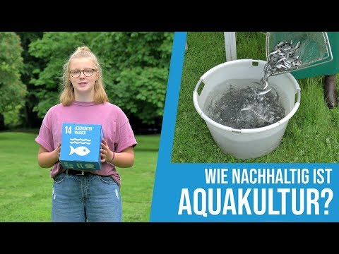 Mathilda fragt nach(haltig): Kann Fisch aus Aquakultur nachhaltig sein?