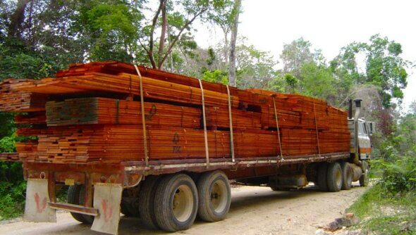 Transport von FSC-zertifiziertem Holz im Partnerland. Foto: © FSC International