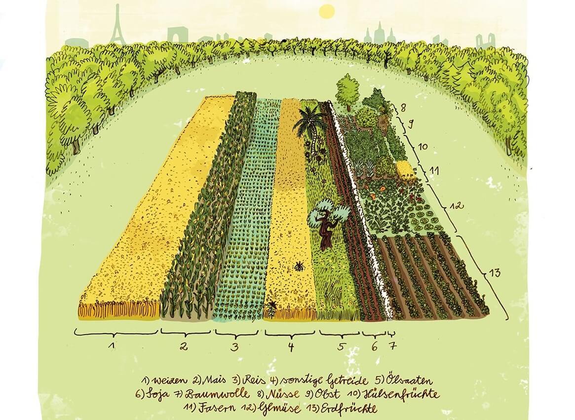 """""""Der globale Acker"""" stellt dar, wieviel Ackerfläche für jede und jeden zur Verfügung steht. Illustration: © Annika Huskamp"""